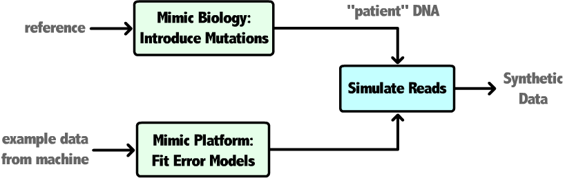 Next Generation Sequencing Simulator