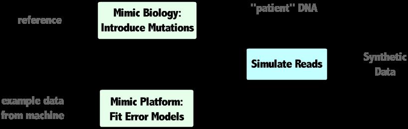 Next Generation Sequencing Simulator